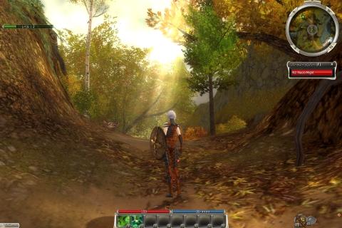Guild Wars Graphic3